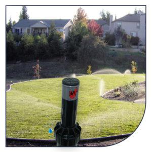 Pop-up sprinklere til vandingsanlæg